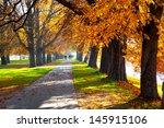 pedestrian walkway for exercise ... | Shutterstock . vector #145915106