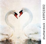 swans heart   vintage photo | Shutterstock . vector #145923302
