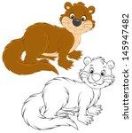 otter | Shutterstock .eps vector #145947482