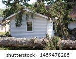 Home Insurance. Insurance Stor...
