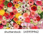 Seamless Colorful Flower...