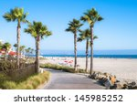 beach and palm trees in san... | Shutterstock . vector #145985252