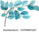 blue retro exotic menthol... | Shutterstock . vector #1459889105