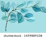 blue retro exotic menthol... | Shutterstock . vector #1459889108