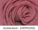 Dusky Pink Rose Isolated  ...