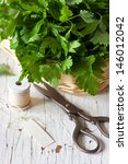 Bunch of fresh parsley and scissors on a white board. - stock photo