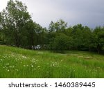 In The Foreground A Meadow Wit...