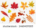 autumn falling leaves isolated... | Shutterstock .eps vector #1460439305