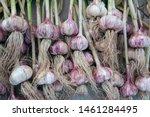 Macro Photo Food Garlic Bulb....