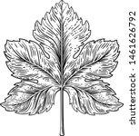 A Grape Leaf Design Element In...