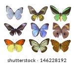 butterfly on white | Shutterstock . vector #146228192