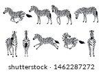 set of african zebra side and... | Shutterstock .eps vector #1462287272