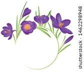 crocuses. crocus. beautiful... | Shutterstock .eps vector #1462298948