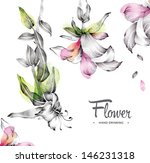 flowers  hand drawing  | Shutterstock . vector #146231318