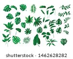 collection various of green... | Shutterstock .eps vector #1462628282