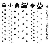 paw print set. isolated paw... | Shutterstock .eps vector #146267132