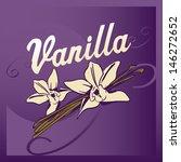 vanilla | Shutterstock .eps vector #146272652
