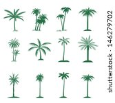 palm tree isolated on white  | Shutterstock . vector #146279702