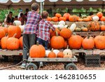 Kids On A Harvest Festival At...