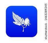 Raspberry Icon Blue Isolated O...