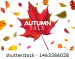 autumn sale banner. season... | Shutterstock .eps vector #1463386028