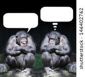 Stock photo two chimpanzees having a fun 146402762