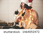 Cute Cat Playing With Santa Hat ...