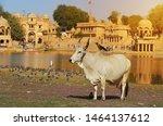 Indian Landmarks Gadi Sagar...