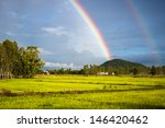 Rainbow Over The Rice Field In...