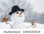 Snowman With Light Star In...