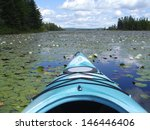 water lily lake from kayak in...