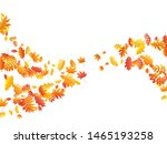 oak  maple  wild ash rowan... | Shutterstock .eps vector #1465193258