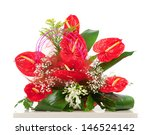 Red Anthurium Flower Isolated...