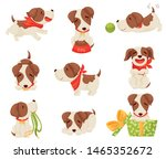 Stock vector set of images of a joyful puppy vector illustration on white background 1465352672