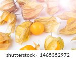 Physalis Fruit  Physalis...