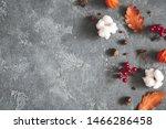 Autumn Composition. Dried...
