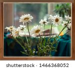 Bouquet Of Daisies In The...