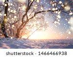 Christmas Background. Magic...