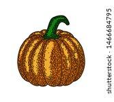 pumpkin isolated on white... | Shutterstock .eps vector #1466684795
