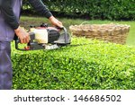 a man trimming hedge with... | Shutterstock . vector #146686502