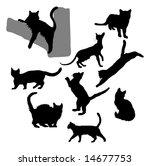 cat    kitten silhouettes   Shutterstock .eps vector #14677753