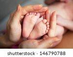 baby's foot in mother hands... | Shutterstock . vector #146790788
