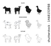 vector illustration of breeding ... | Shutterstock .eps vector #1468153988
