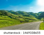 Beautiful sunny summer landscape in the mountains of Armenia - mountains, horse, meadow and empty automobile road