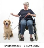 Woman In Wheelchair With Guide...