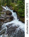 Mt Rainer National Park Water...