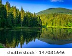 landscape by the lake in the early morning. coniferous forest near the lake and the forest mountain - stock photo