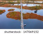 peat bog swamp northern Europe - stock photo