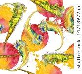 exotic iguana wild animal in a... | Shutterstock . vector #1471397255