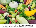 fresh harvest from the gardens... | Shutterstock . vector #1472157332